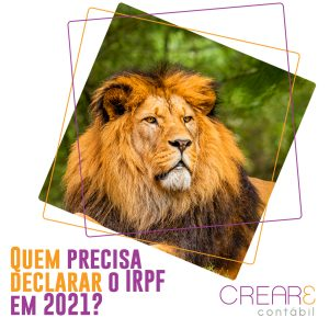 Quem precisa declarar o IRPF em 2021?
